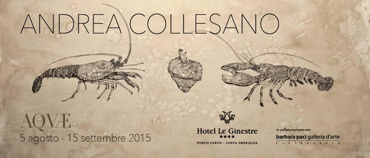 Andrea Collesano - Acquae - Hotel le Ginestre - Porto Cervo | Agosto - Settembre